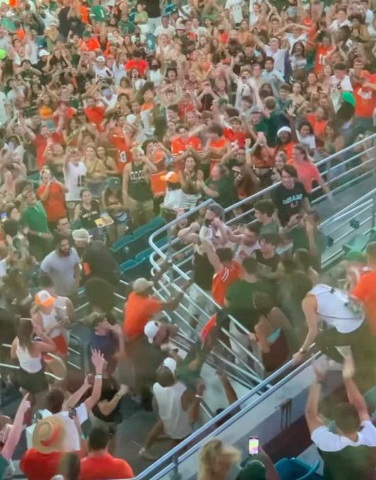 Dantejskie sceny na stadionie. Nagle kot się poślizgnął i spadł z wysokiej trybuny