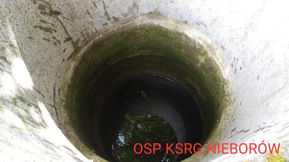 """Wstrząsające odkrycie w studni pod Łodzią. """"Gdy zobaczyłem, co znajduje się w środku, zamarłem"""""""